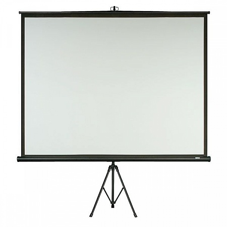 TRIPOD SCREEN 100""